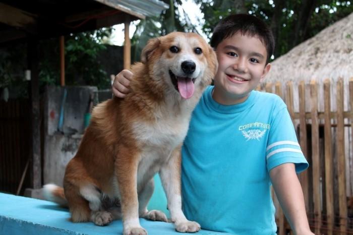 Happy Animals Club Ken zachranca psikov a maciek 17