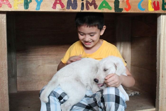 Happy Animals Club Ken zachranca psikov a maciek 2