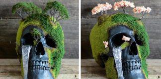 Vyrába bonsajové lebky, ktoré menia smrť na život