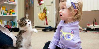 Dievčatko s amputovanou rukou našlo najlepšieho priateľa v trojnohom mačiatku