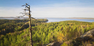 Toto video ti ukáže, prečo by si mal navštíviť Fínsko