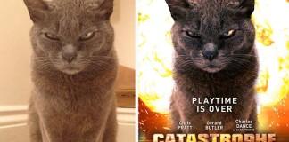Muž mení náhodné fotky z internetu na skvelé filmové plagáty. Výsledok je viac než úžasný!