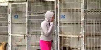 Nevedela rozhodnúť, ktorého psíka si má adoptovať z príšerného útulku. Tak si vzala všetky!